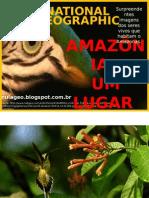 Amazônia Um Lugar No Mundo