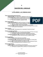 IV. AFINACIÓN DEL LINGUAJE (resumen).pdf