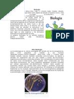 2. Biología y Sus Derivaciones