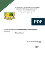 Referat fitopatologie
