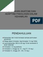 perub_anatomi.ppt_a