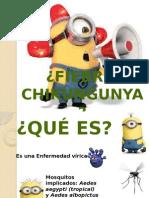 Chicungunya
