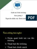 B+ái giߦúng 3 - Nguy+¬n nh+ón suy tho+íi m+¦i tr¦¦ß+¥ng
