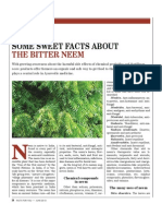 Sweet Facts About the Bitter Neem