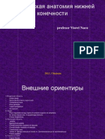 A Clinica Membrul Pelvian Rus Feb 2013