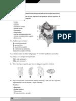 aebg10_b_teste1.pdf