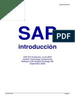 SAP R3 Introduction (Spanish)