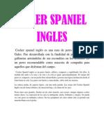 COOKER.pdf
