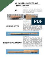 Bamboo Instruments of Mindanao
