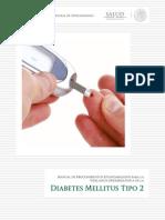 Manual DM2 2012