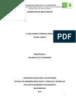 Informe 2 Metalografía Final Andrea