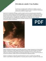 Cómo Prevenir la Pérdida de cabello Y Sus Posibles Tratamientos
