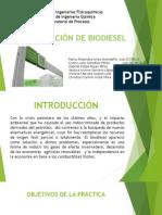 expo producción de biodiesel.pptx