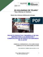 Desarrollo de Una Empresa Para La Elaboracion y Comercializacion de Productos Derivados de La Lec