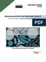 1 Organización Sistemas Vivos I.pdf