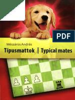 Typical Mates - Meszaros HD