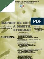Raport de expertiza a DME.pptx