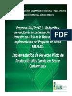 Presentaciones Proyecto PML Curtiembres 12-12-11