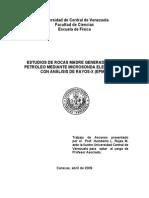 ESTUDIOS DE ROCAS MADRE GENERADORAS DE PETROLEO MEDIANTE MICROSONDA ELECTRÓNICA CON ANÁLISIS DE RAYOS-X (EPMA)