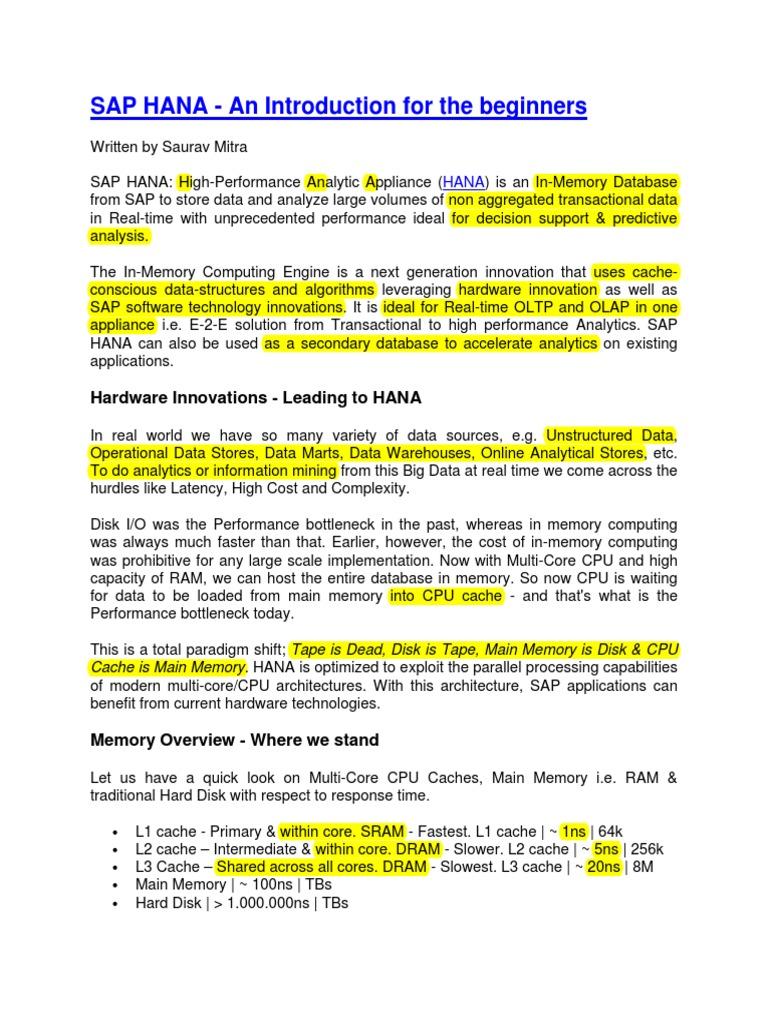 SAP HANA an Introduction for the Beginners - R | Computer Data