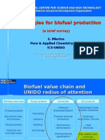 70760_Biofuels_Technologies__UNIDO_ICS_Miertus_.ppt