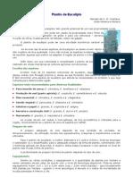 Manual Eucalipto Rildo Moreira
