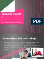Modelos organizacionales.pptx
