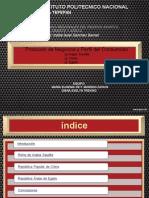 Protocolo y Perfil