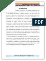 LAPICERO QUE INCLUYA UN ABANICO.docx