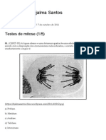 Testes de Mitose (1_5) _ Blog Do Prof