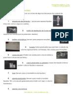 4.1 - Terra em transformação – Materiais - Constituição do mundo Material - Informação.pdf