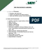 Informe Psicológico Laboral