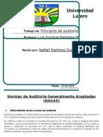 Normas de auditoria (NAGA).docx