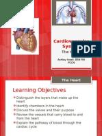 The Cardiovascular System - The Heart