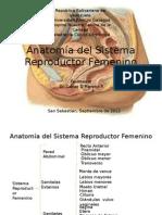 Anatomía del Sistema Reproductor Femenino.pptx