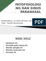 PATOFISIOLOGI HIDUNG DAN SINUS PARANASAL gamal.pptx