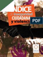 Indice Inseguridad Violencia (2009)