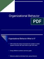 Organizational Behavior Basics