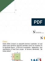 S03-2-MB0-PDN-2015-0-Polinomios