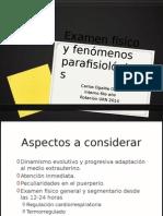 Examen Físico y Fenómenos Parafisiológicos del RN - 2014