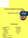 Urinary tract disorders,powerpoint.ppt