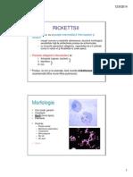 C8_Grupe de Bacterii1_2014 [Compatibility Mode] (1)
