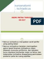Anatomi Dan Perjalanan Nervus Ischiadicus -Dr. Jan Andreas