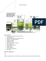 2-Algae-for-Dummies.pdf