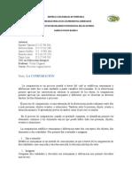 Ensayo de p.cognoscitivo (Autoguardado) (1)
