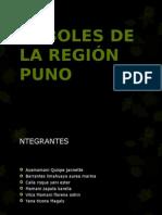 Flora en Puno