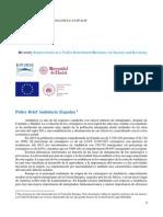 Prpyecto DIVERSE Policy brief Español