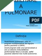 PowerPoint  RP cel corectat. FInisat.ppt