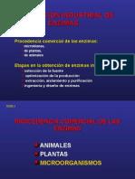 92013977 Produccion de Enzimas