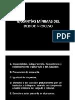 14 Garantías Mínimas Del Debido Proceso